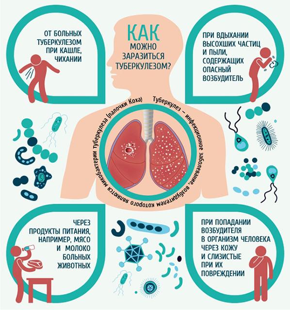 туберкулез все про болезнь избавления