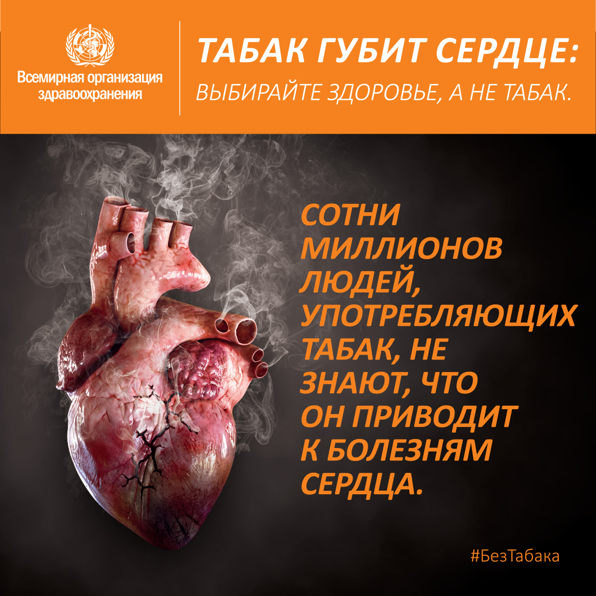 wntd2018-socialmedia--200x1200-cardio-ru