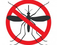 the mosquitoes stop sign - vector image of funny of a mosquito in a red crossed out circle