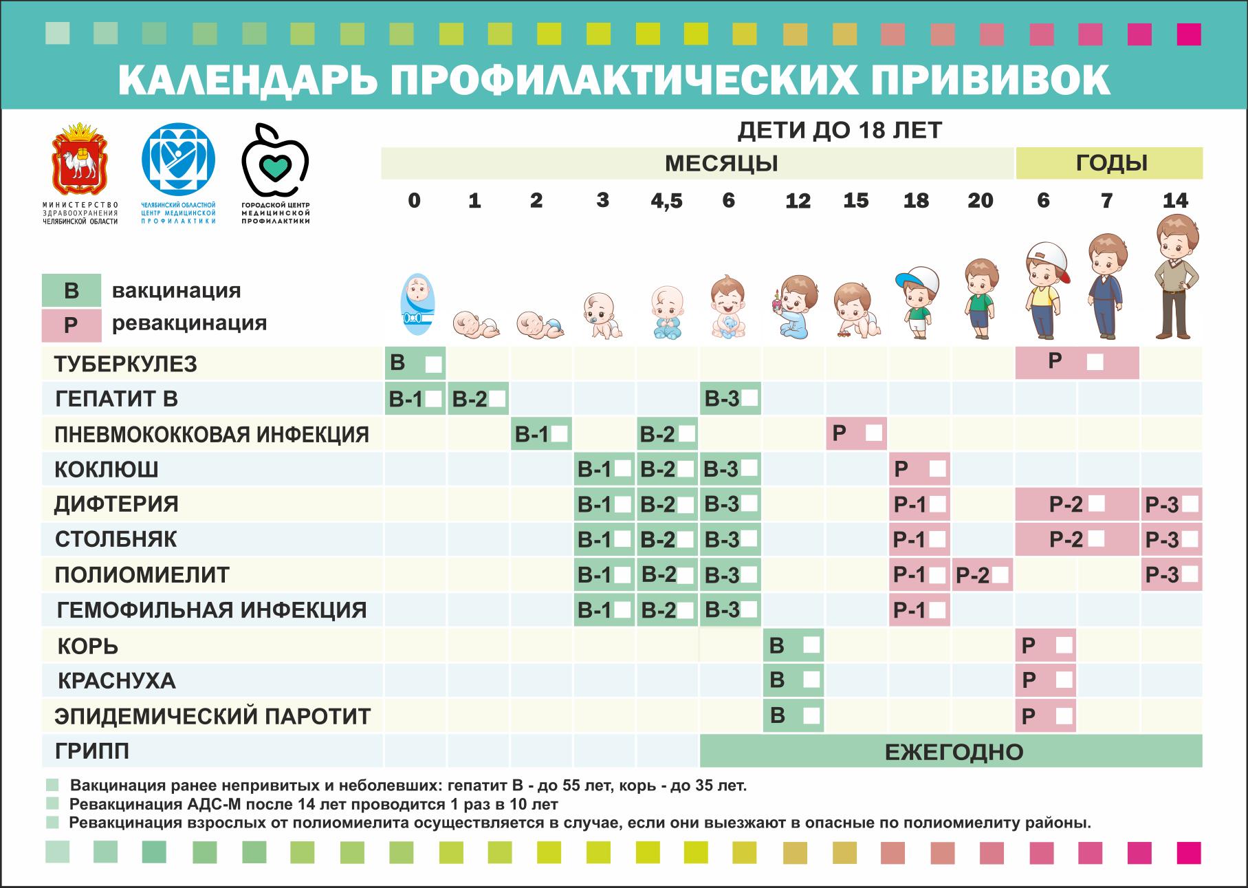 Копия календарь прививок